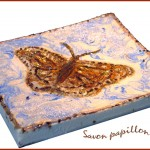Savon papillon
