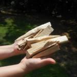 Les bois en parfumerie (2)
